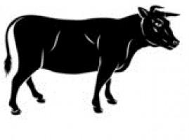 GPS трекер для коров