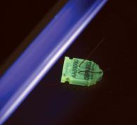 Свечение люминесцентной пломбы Силтэк в УФ излучении